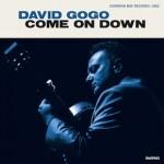 David Gogo CD cover