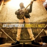 Joe Louis Walker CD cover
