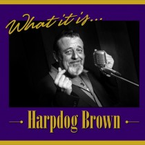 Harpdog Brown CD cover
